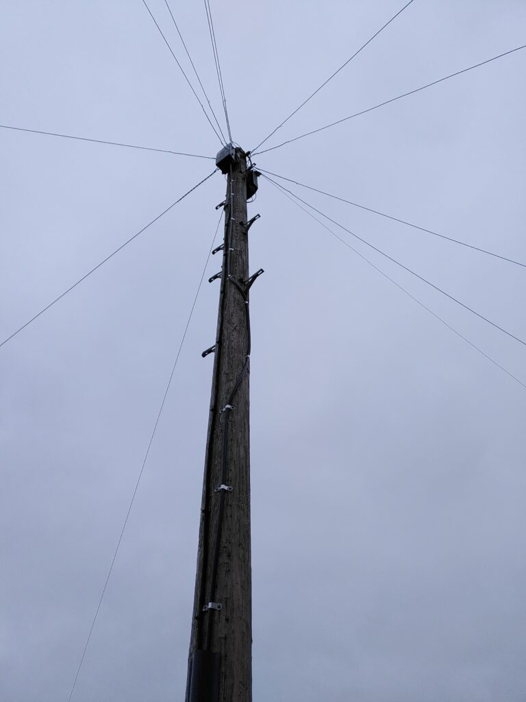 Telegraph pole showing the new fibre cable. View from the base of the pole.